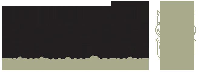 north_financial_web_logox2